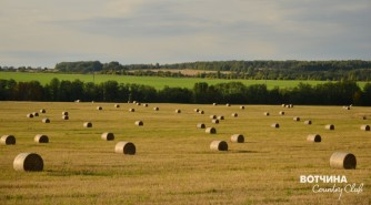 Порядок на поле, порядок в жизни. Гектары земли для воплощения мечты о своей Вотчине