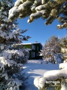 Самый белый, чистый и пушистый снег - на Вотчине