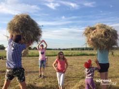 Выстраиваем максимально высокий стог сена. Кто выше?