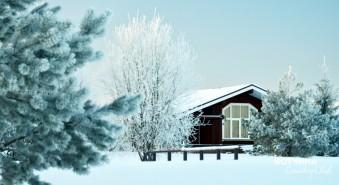 Гостевой дом-баня. Для тех, кто 31 декабря с друзьями ходит в баню:)