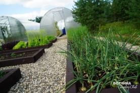 Огород тоже может выглядеть красиво - на больших участках для всего хватит места
