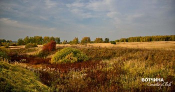Осеннее многотравье